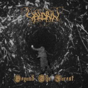 Valdrin - Beyond The Forest Cd